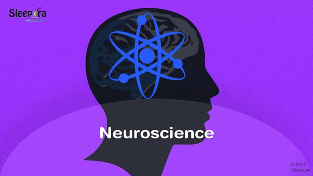 Neuroscience - Sleep - Sleepora
