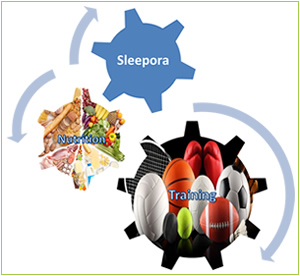 Elite Sport Performance - Training | Nutrition | Sleep