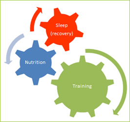 High Level Performance: Training | Nutrition | Sleep
